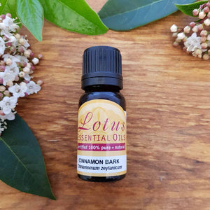 Cinnamon Bark Cinnamomum Zeylanicum Essential Oil (certified 100% pure & natural) 10ml