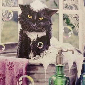 Cat Bath Time Canvas by Lisa Parker (approx. 25 x 19cm)