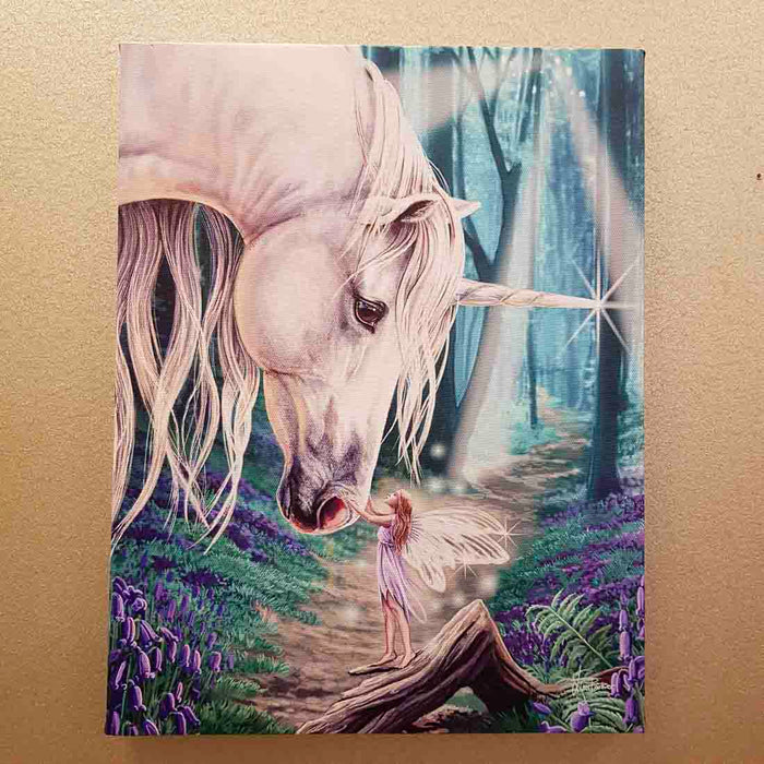 Fairy Whispers Canvas by Lisa Parker (approx. 25 x 19cm)