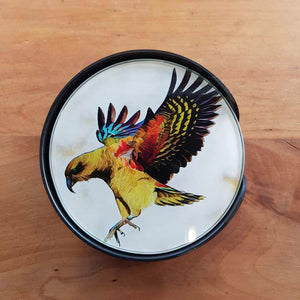 Aotearoa New Zealand Birds Glass Coasters (set of 6)