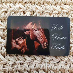 Seek Your Truth Horse Wisdom Magnet (approx. x9cm)