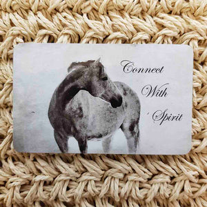 Connect With Spirit Horse Wisdom Magnet (approx. x9cm)