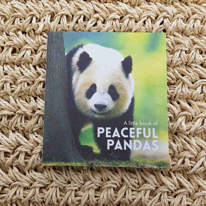 A Little Book of Peaceful Pandas (approx. 8.5x9.5cm)