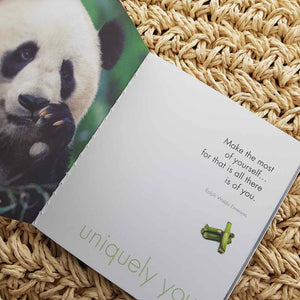 A Little Book of Peaceful Pandas