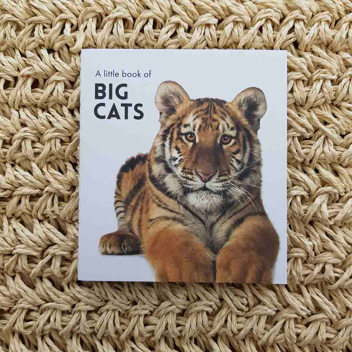 A Little Book of Big Cats (approx. 8.5x9.5cm)