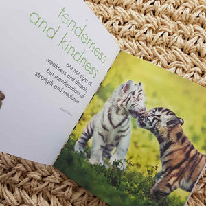A Little Book of Big Cats