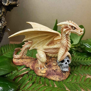Baby Desert Dragon by Anne Stokes