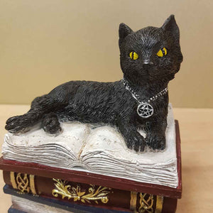Black Cat on Book Trinket Box