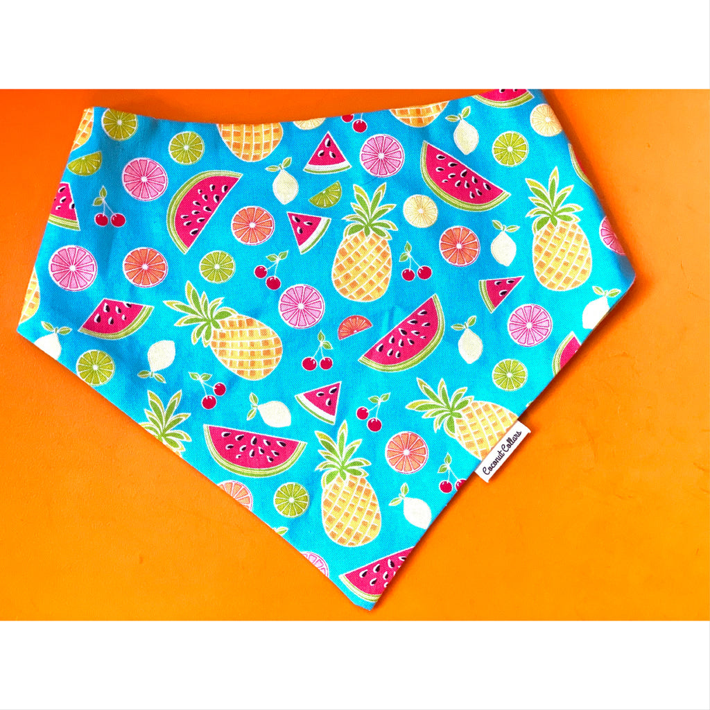 reversible bandana - tropical fruit & blue check - 1 large left!