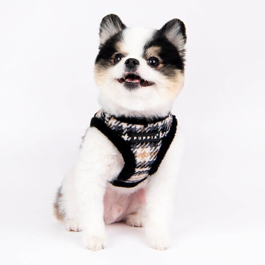 kellen vest harness - black