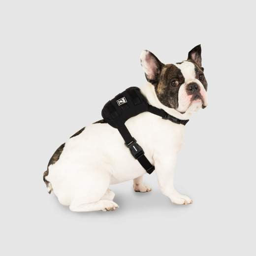 pack-it rain dog jacket