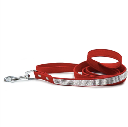 bling leash - assorted colours