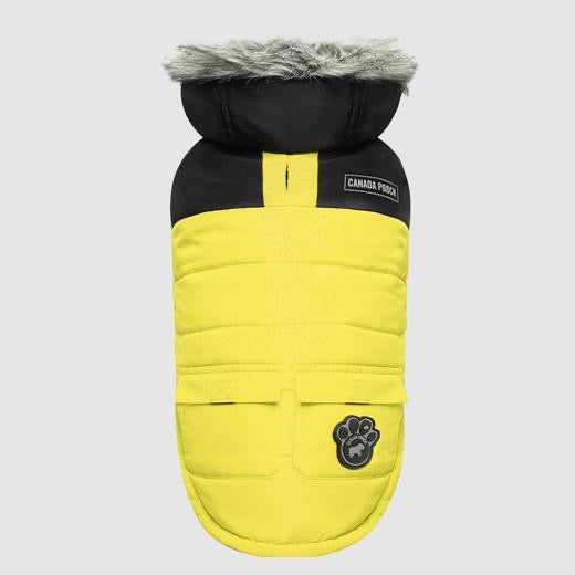 true north parka - yellow