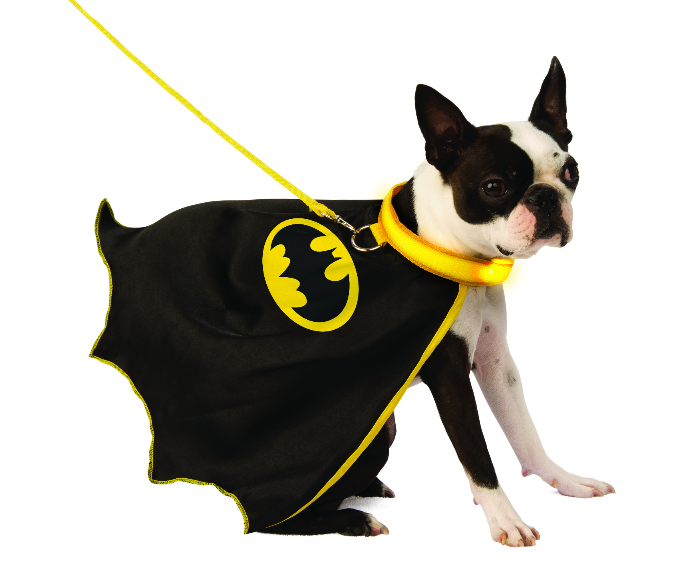batman pet cape with light up collar & leash - only 2 left!
