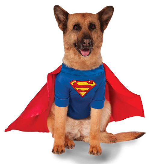 big dog superman - 1 left!