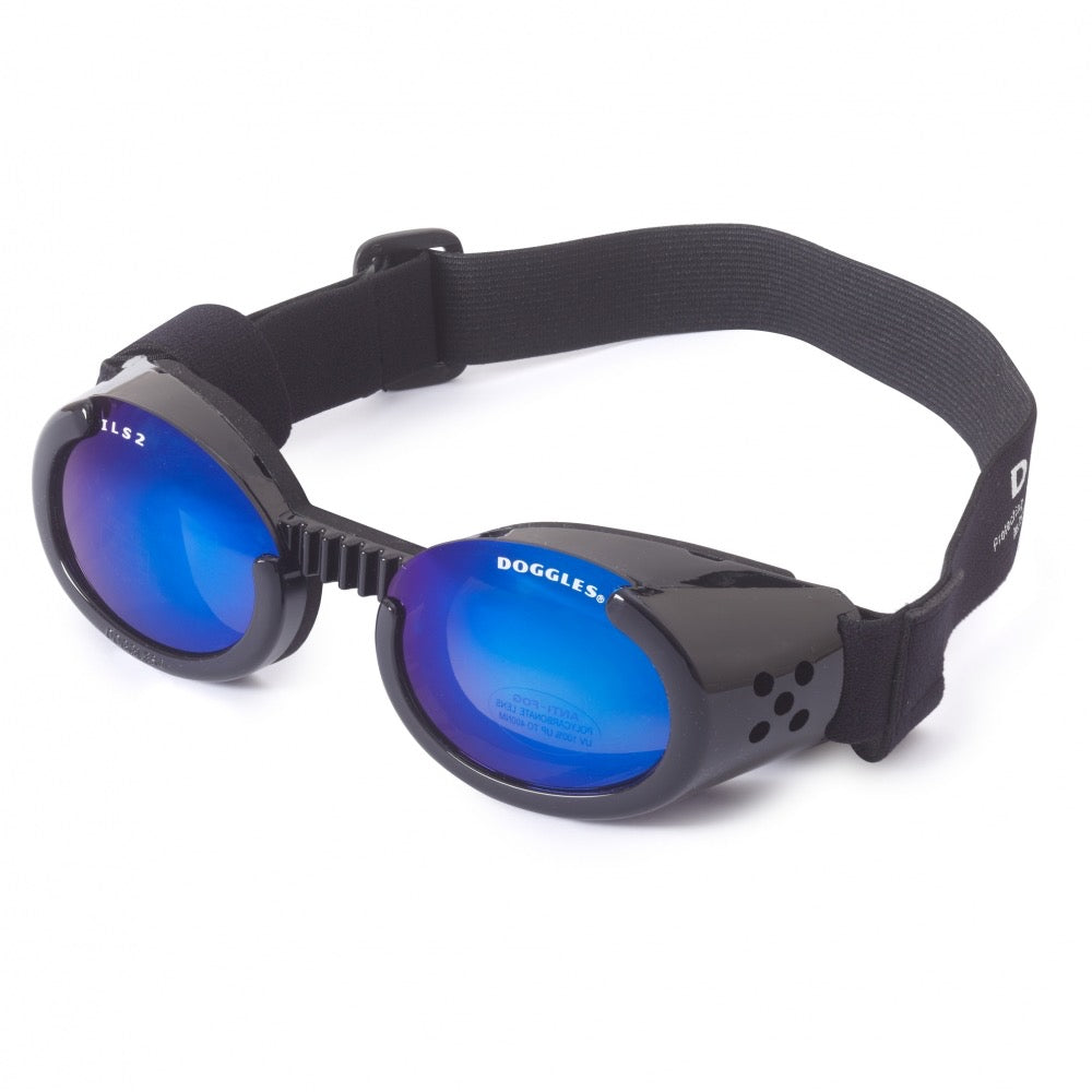 doggles - black frames with blue lens