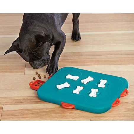 dog casino puzzle toy