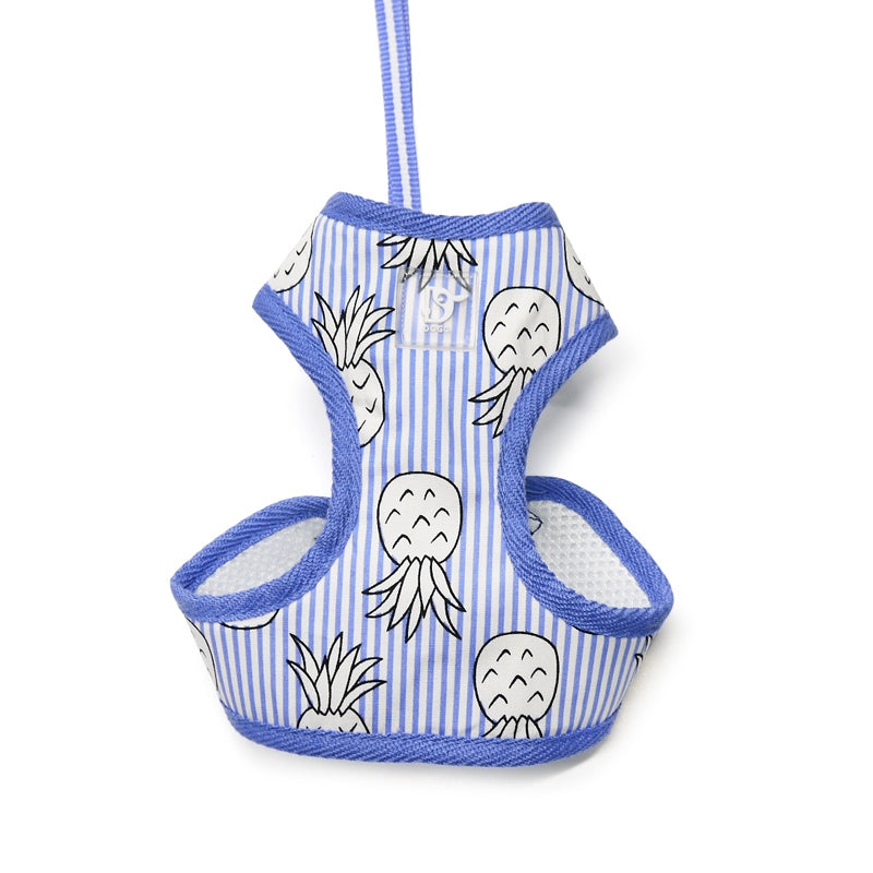 pineapple harness - blue