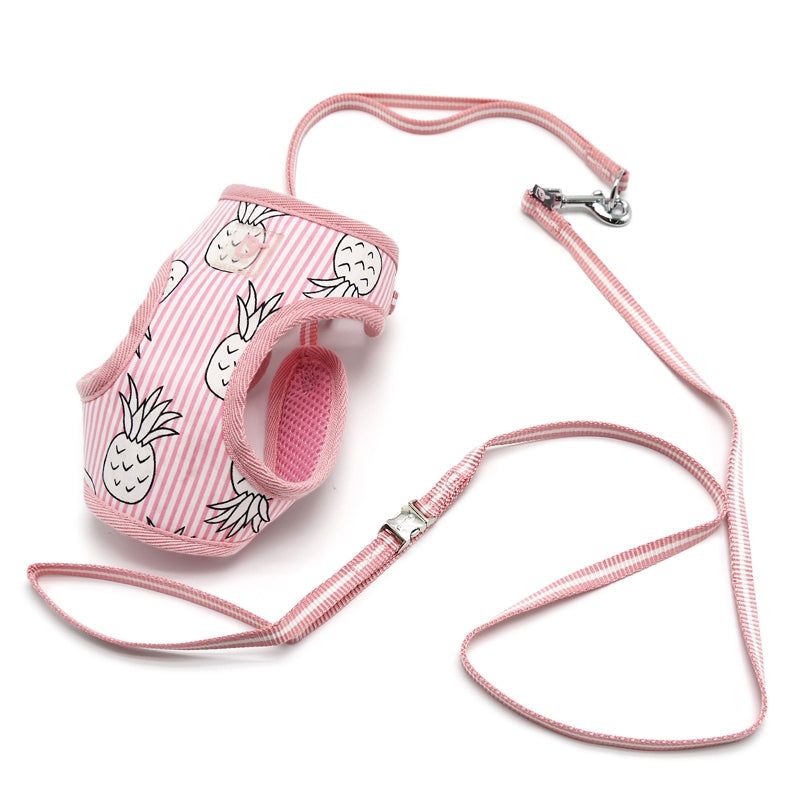pineapple harness - pink