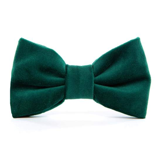 forest green velvet collar with bow tie - 1 small left!