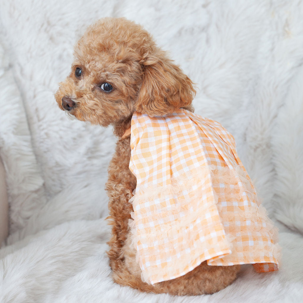 peach gingham dress
