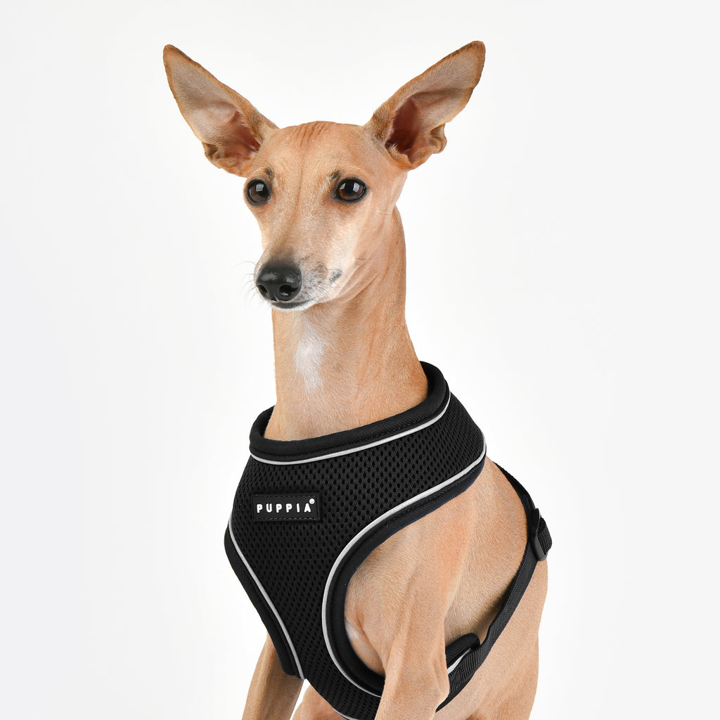 soft harness pro A with reflective strips - black - available in large!