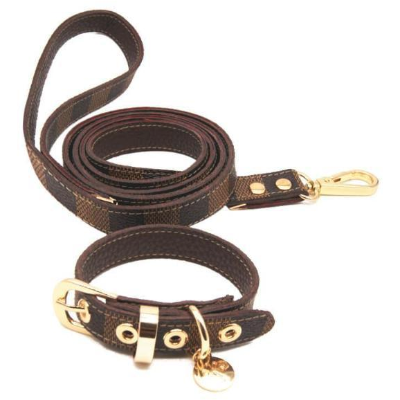 louis-pup brown dog leash & collar set