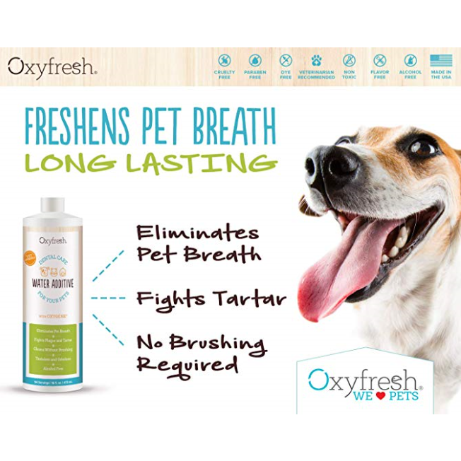 oxyfresh oral hygiene solution - 16 oz