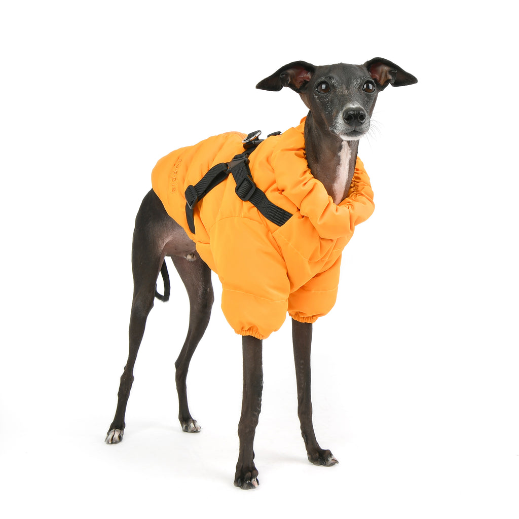 soft coat with built-in harness - orange