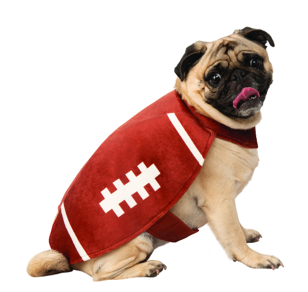 pet football costume