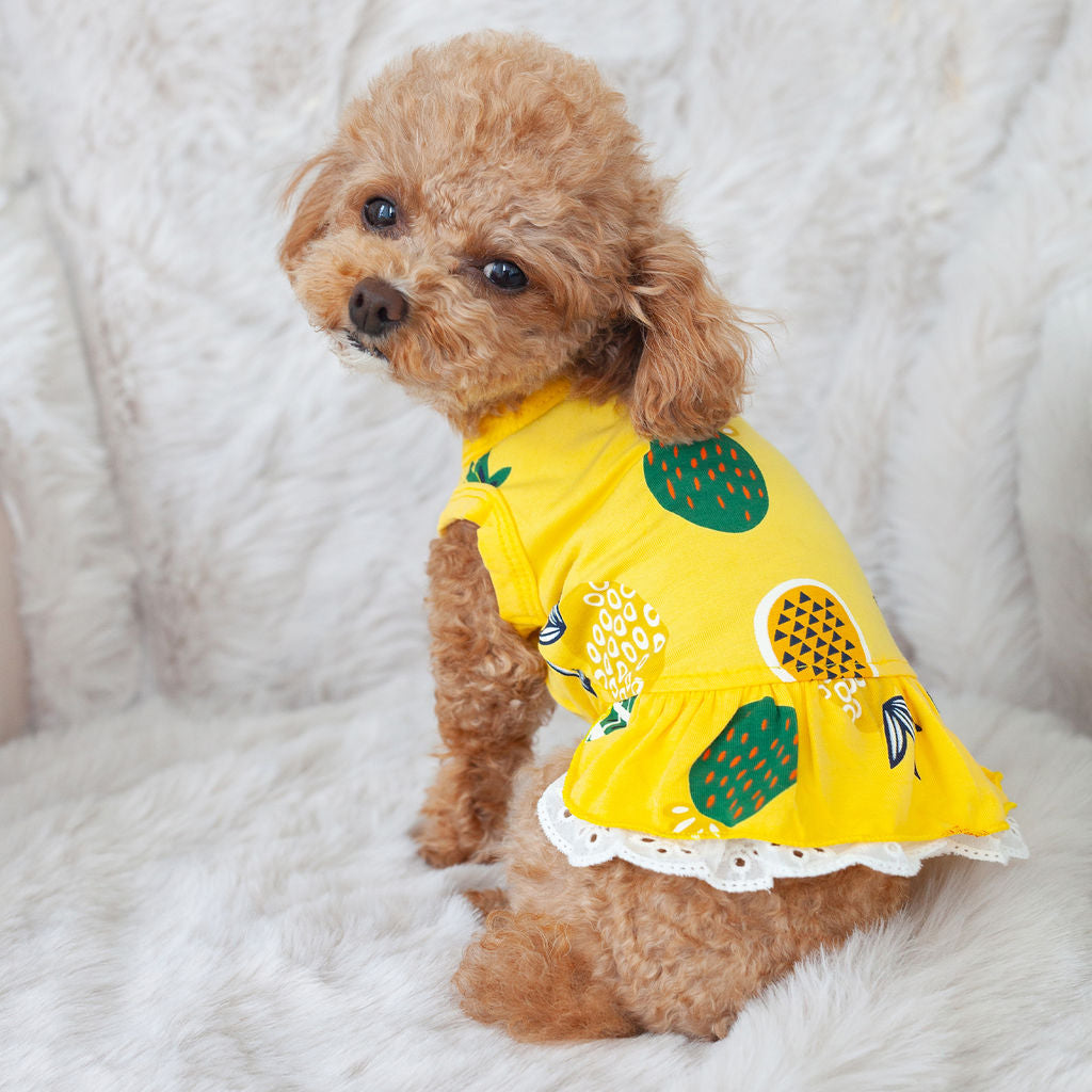 pineapple sun dress
