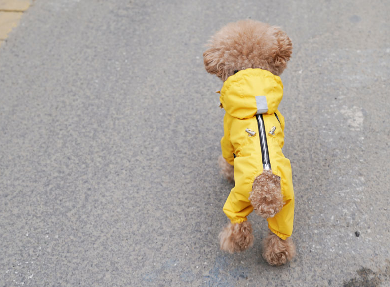 yellow raincoat overalls - for girls only!