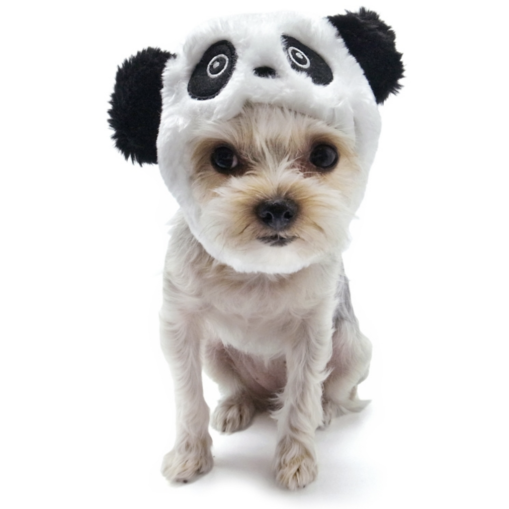 panda hat - sold out!
