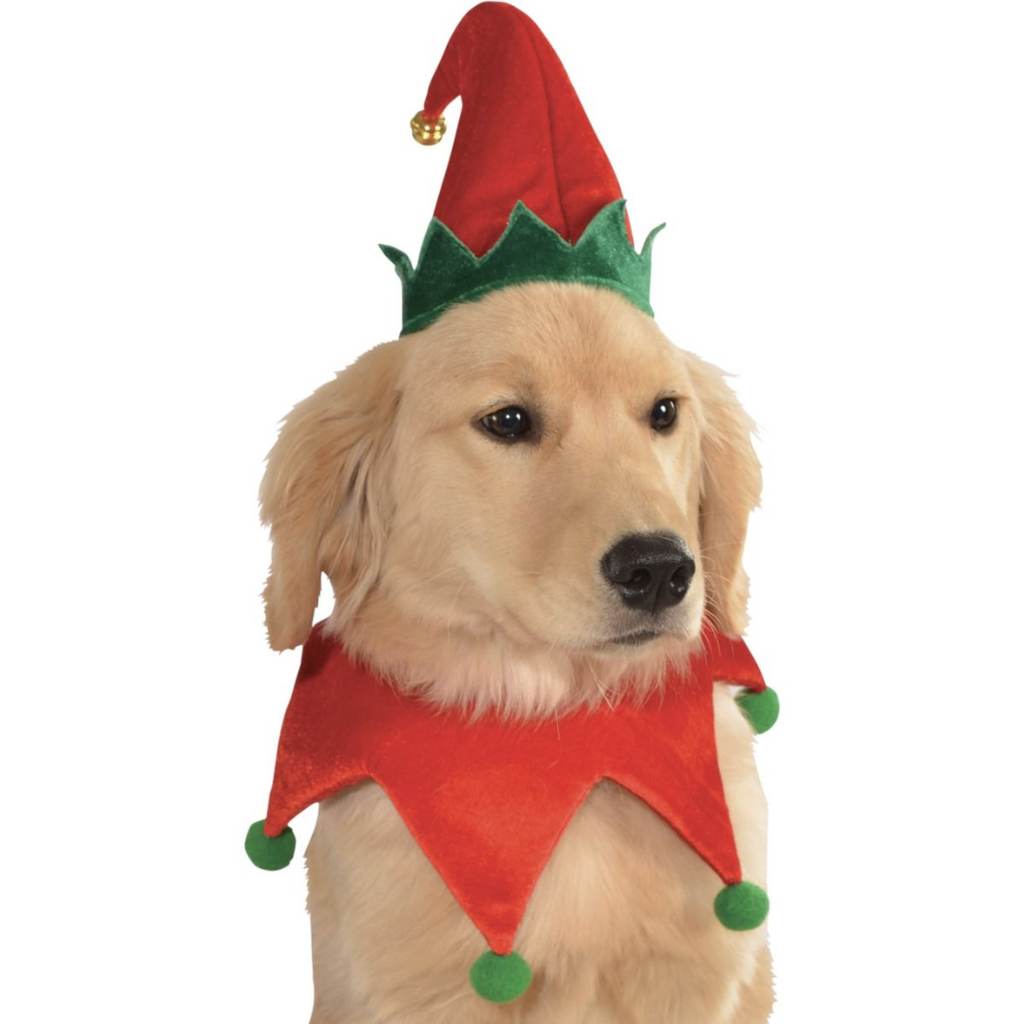 elf jingle hat with collar