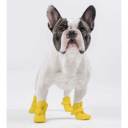 wellies booties - yellow or black