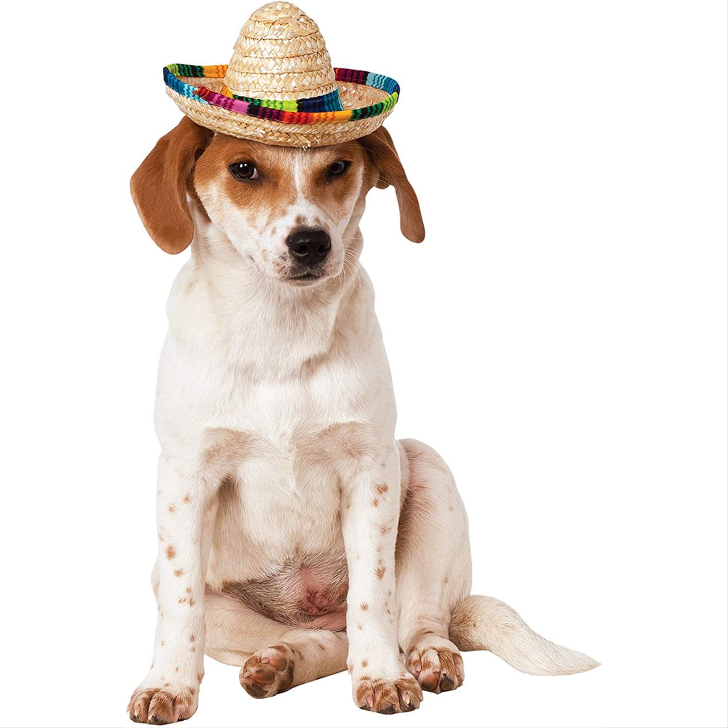 multi-colored sombrero
