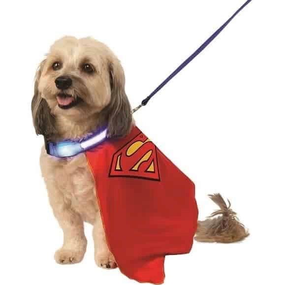 superman cape with light-up collar & leash