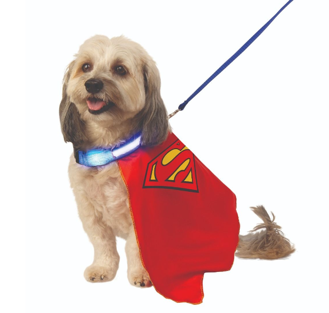 superman pet cape with light up collar & leash