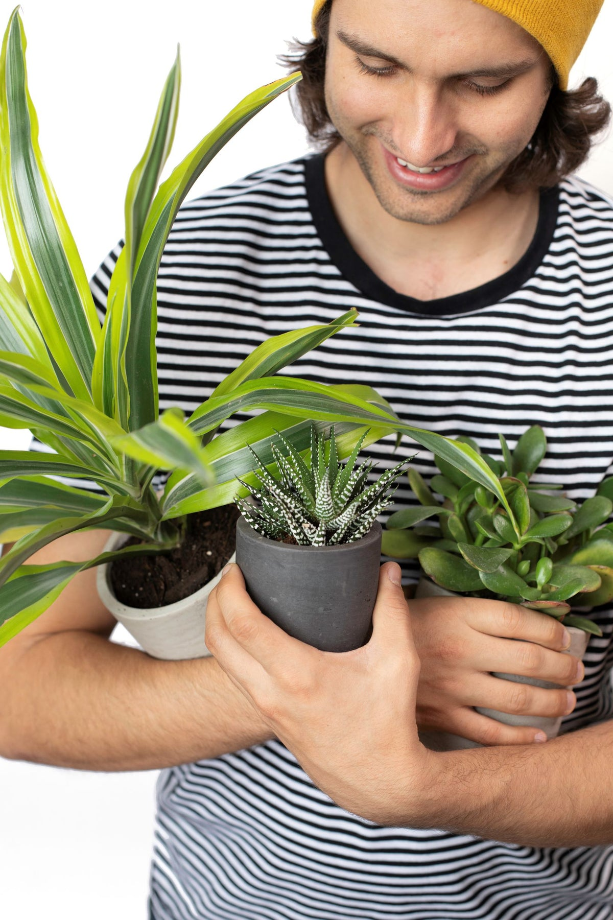 10 Questions with Desk Plants Founder Lawrence Hanley