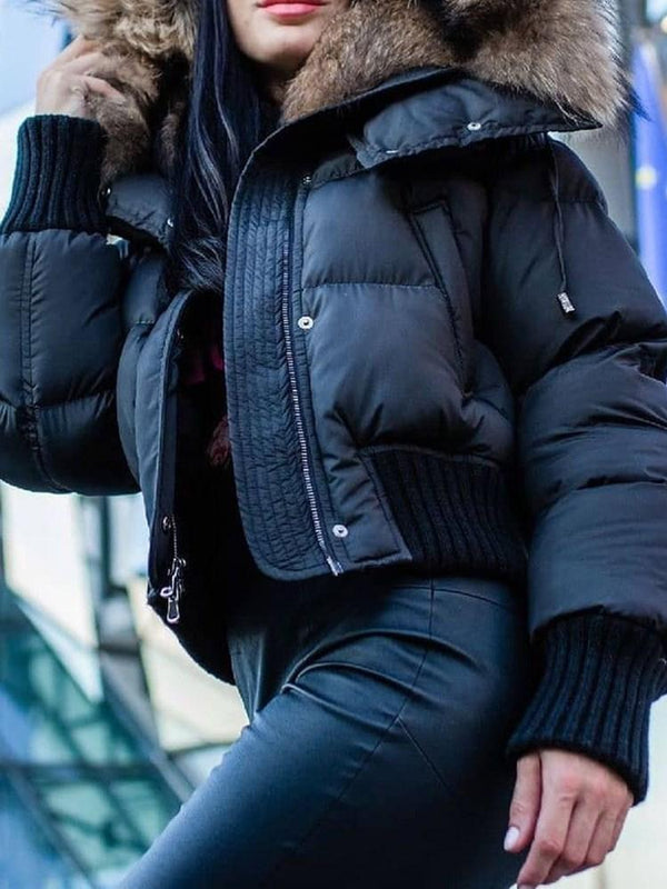 Zipper Thick Zipper Standard Cotton Padded Jacket