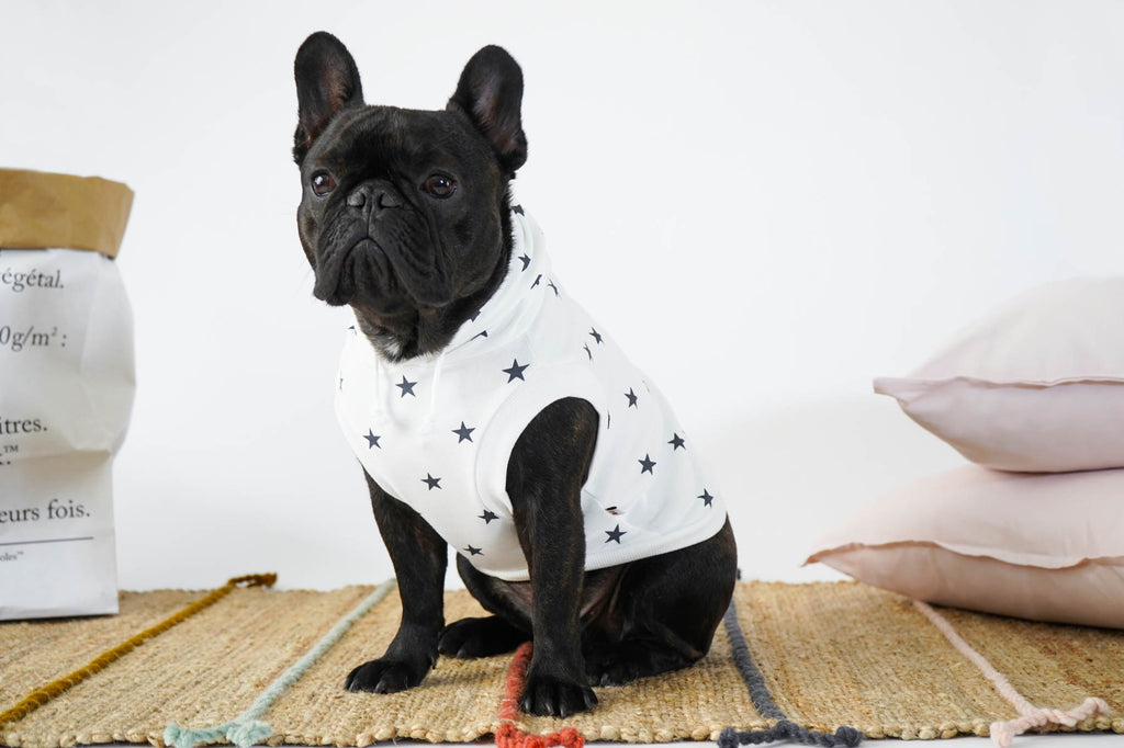 French Bulldog in Star Print Hoodie