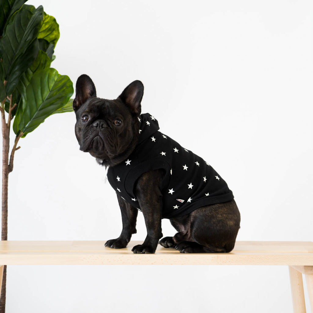 French Bulldog in Black Star Print Hoodie