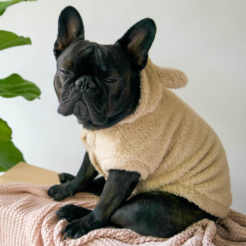 Fleece Teddy Jacket for Dogs - Beige