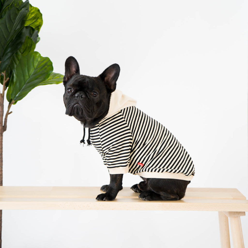 Striped Hoodie for French Bulldogs