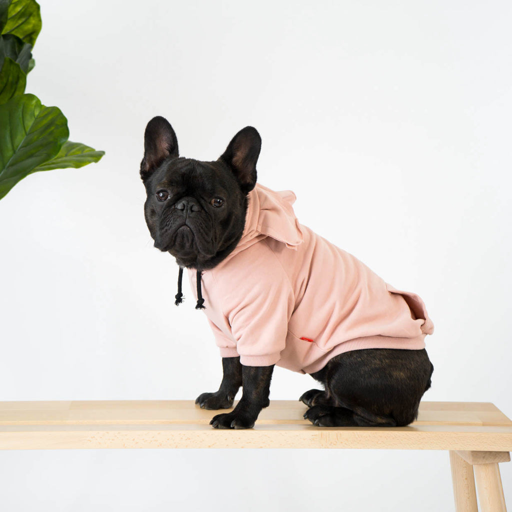 Pink Hoodie with Ears for French Bulldogs