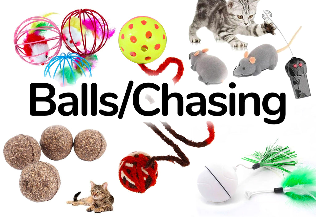 Balls/Chasing - Best Cat Toys for your Cat