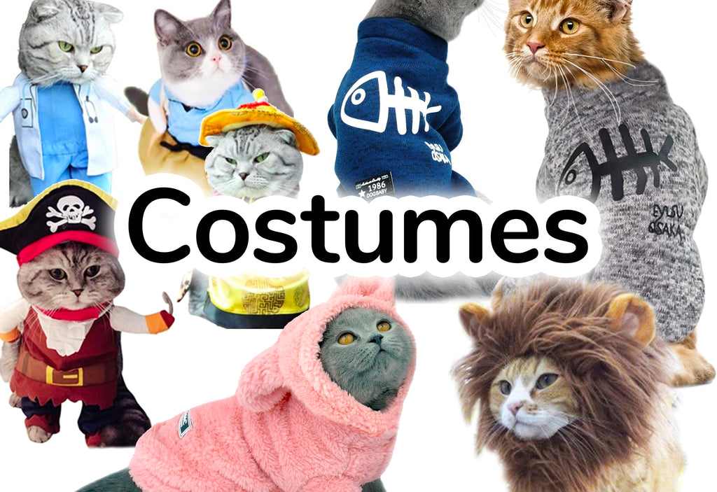 Cat Costumes: Bumblebee, Lion, Cowboy Outfits - CatToyz