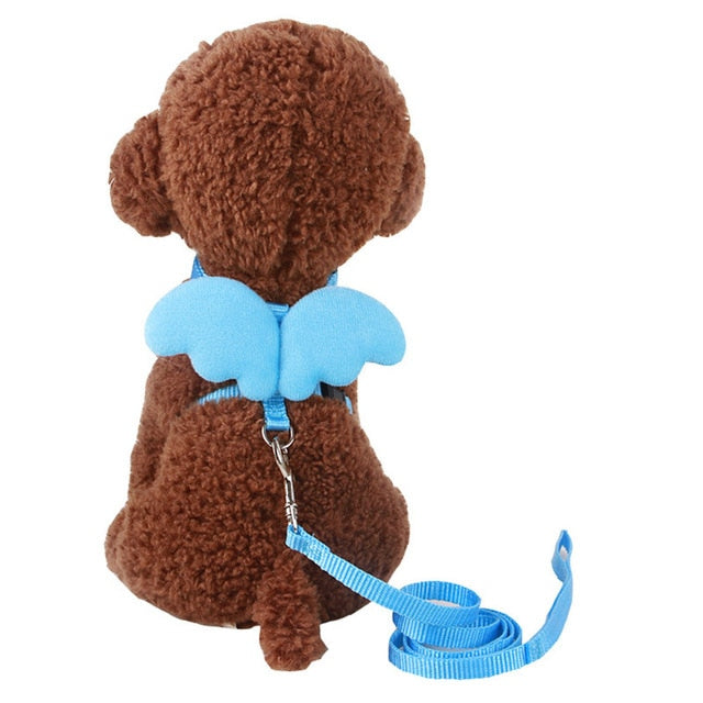 Angel Wings Harness For Cats Sky Blue / S | CatToyz.com | Shop Cat Toys, Clothes, and Grooming Supplies