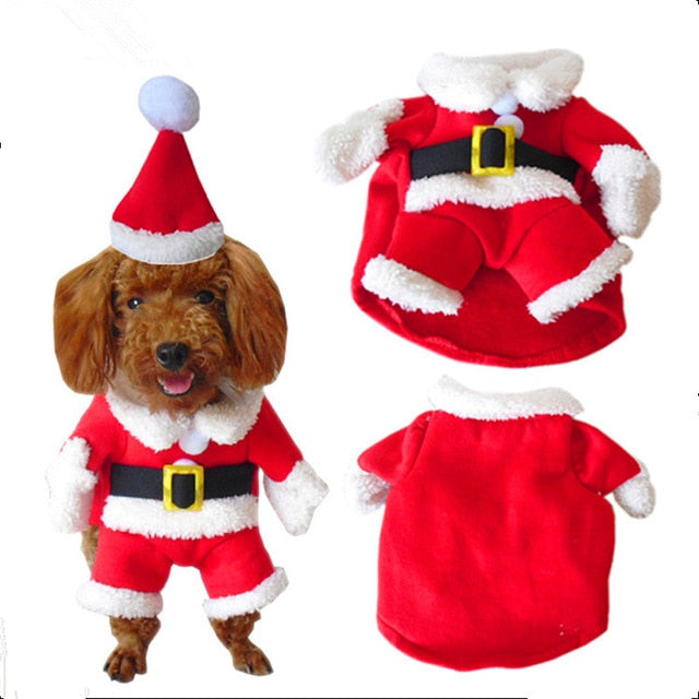 Christmas Santa Costume For Cats Red Costume / L | CatToyz.com | Shop Cat Toys, Clothes, and Grooming Supplies