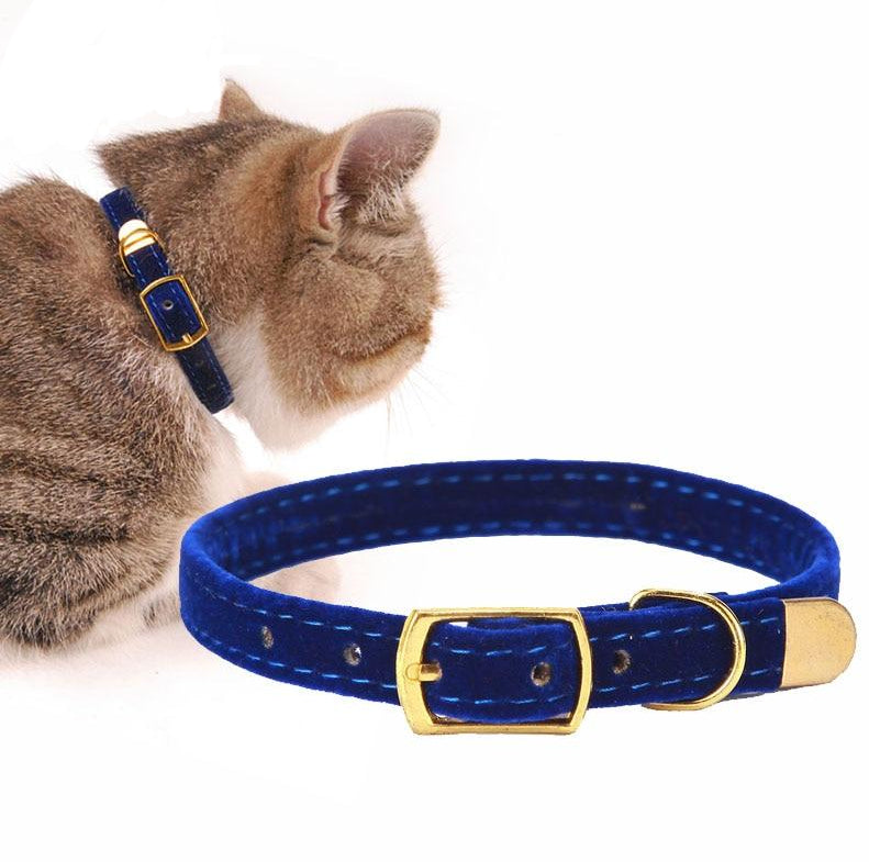 Soft Flocking Cat Collar  | CatToyz.com | Shop Cat Toys, Clothes, and Grooming Supplies